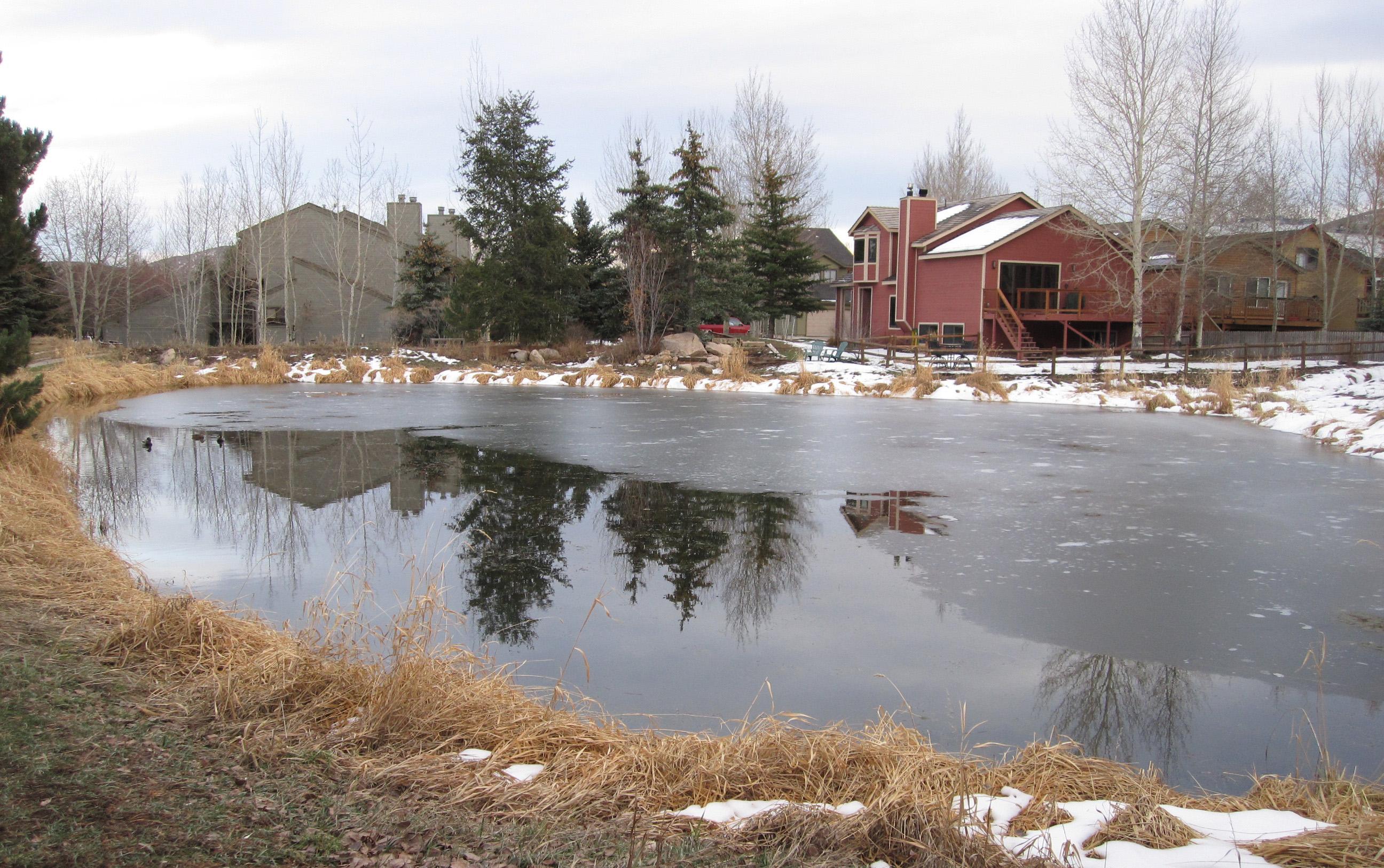 загородная недвижимость ло, загородный дом у воды