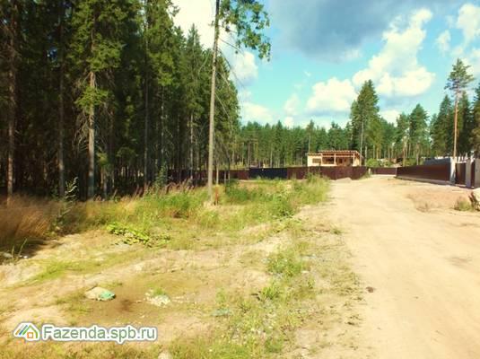 Коттеджный поселок  Ленинское, Выборгский район.