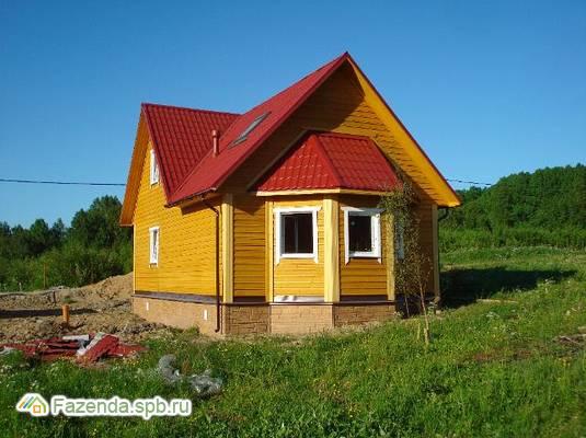 Коттеджный поселок  Хвойная Сказка, Выборгский район. Актуальное фото.