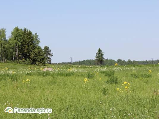 Коттеджный поселок  Солнечные Просторы, Ломоносовский район.