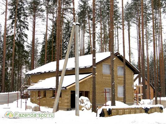 Коттеджный поселок  Вырица, Гатчинский район.