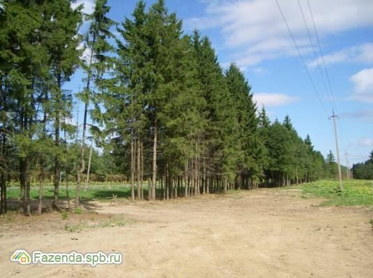 Коттеджный поселок  Елизавета, Гатчинский район.
