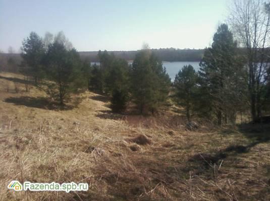 Коттеджный поселок  Речной Бобр, Лужский район.