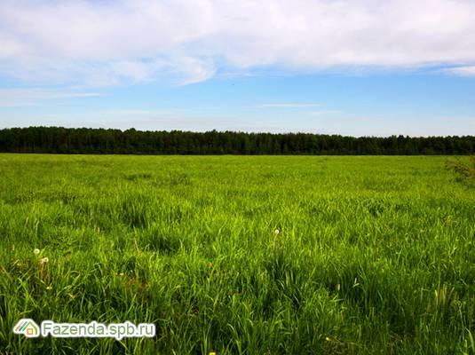Коттеджный поселок  Зарянка, Ломоносовский район.