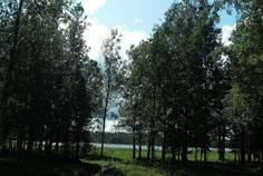 Рядом с Вуокса Яркий берег расположен Коттеджный поселок  Надозерье