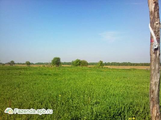 Коттеджный поселок  Кипенская Усадьба, Ломоносовский район.