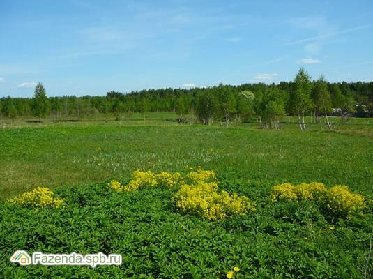 Коттеджный поселок  Малиновка 1, Кингисеппский район.