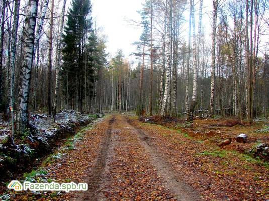 Коттеджный поселок  Черничное, Приозерский район.