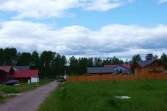 Рядом с Ромашкинские усадьбы расположен Коттеджный поселок  Ромашки