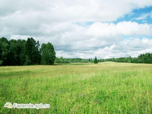 Коттеджный поселок  Хутор близ Извары, Ломоносовский район.