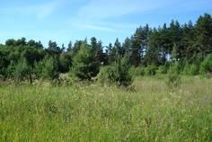 Рядом с Соловьево расположен Коттеджный поселок  Ладожское
