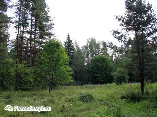 Коттеджный поселок  Хирвисаари, Приозерский район.