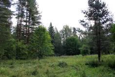 Рядом с Ромашкинские усадьбы расположен Коттеджный поселок  Хирвисаари