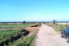 Рядом с Солнечная Поляна расположен Коттеджный поселок  Родные Просторы