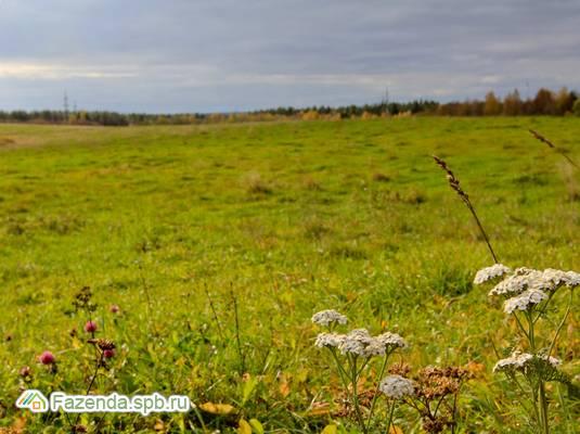 Коттеджный поселок  Усадьба Воронцово, Выборгский район. Актуальное фото.
