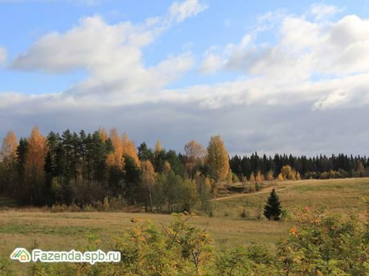 Коттеджный поселок  Усадьба Воронцово, Выборгский район.