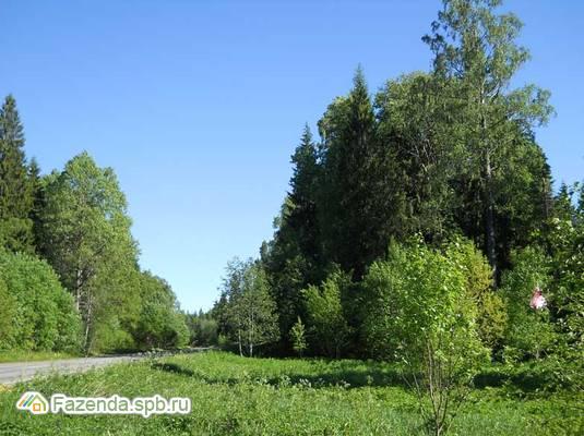 Коттеджный поселок  Лесьяр, Ломоносовский район.