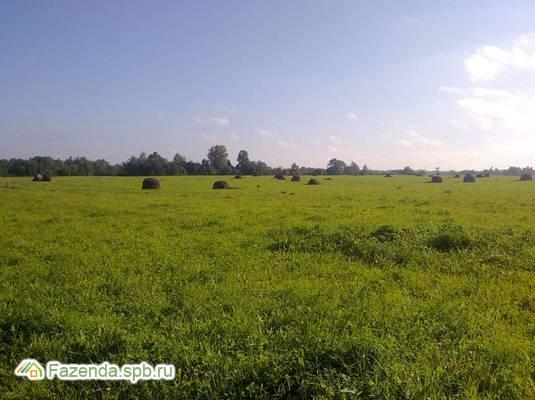 Коттеджный поселок  Три ручья, Ломоносовский район.