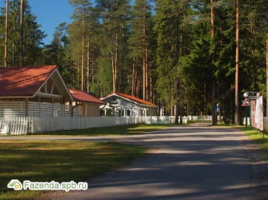 Коттеджный поселок  Корабельные Сосны, Выборгский район.
