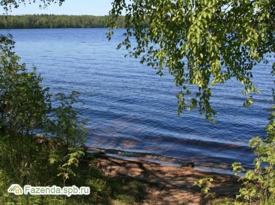 Коттеджный поселок  Озеро Пионерское, Выборгский район.