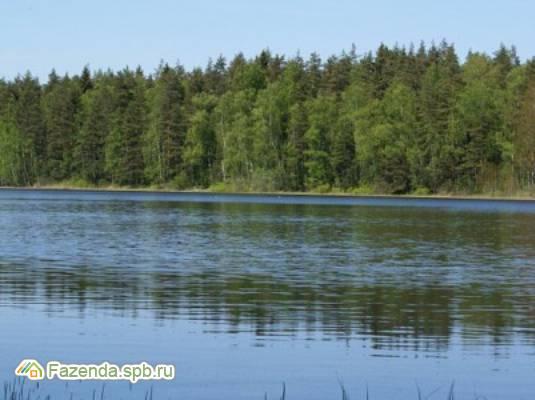 Коттеджный поселок  Ханнила, Выборгский район.