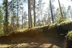 Рядом с в Каменногорске расположен Коттеджный поселок  Ханнила