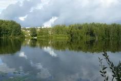 Рядом с Шагрово расположен Коттеджный поселок  Green Hills