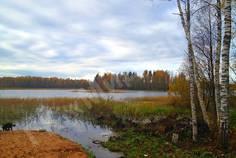 Рядом с Прохладное Озеро расположен Коттеджный поселок  Вуокса Клуб