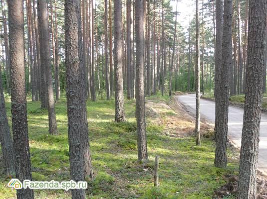 Коттеджный поселок  Борисовский Берег, Приозерский район. Актуальное фото.