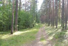 Рядом с Центральное Раздолье расположен Коттеджный поселок  Борисовский Берег