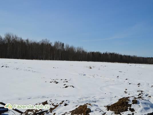 Коттеджный поселок  Велигонты, Ломоносовский район.