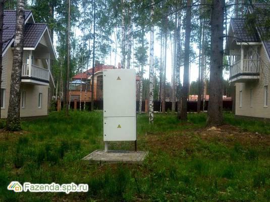 Коттеджный поселок  Лесной Парк, Всеволожский район. Актуальное фото.