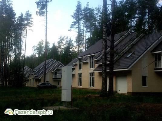 Коттеджный поселок  Лесной Парк, Всеволожский район.