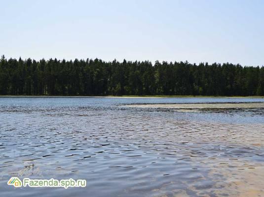 Коттеджный поселок  Красноозерное-2, Выборгский район.