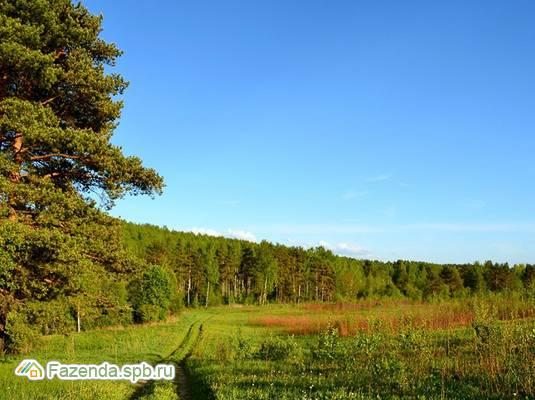 Коттеджный поселок  Успенское, Тосненский район.