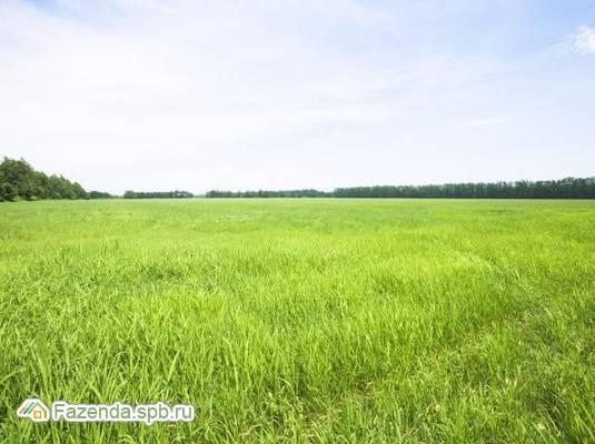 Коттеджный поселок  Красный Маяк, Лужский район.