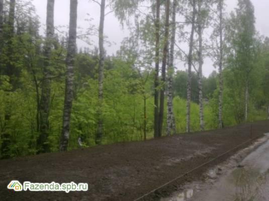 Коттеджный поселок  Канисты, Всеволожский район. Актуальное фото.