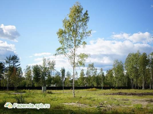 Коттеджный поселок  Валкесаари, Курортный район СПб.