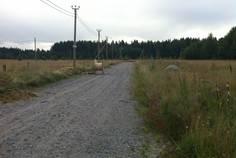 Рядом с Балтийская Ривьера расположен Коттеджный поселок  Старое Приветнинское