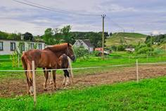 Рядом с Ново-Туутари расположен Коттеджный поселок  Можайское