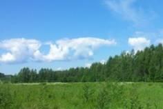 Рядом с Белоостровская жемчужина расположен Коттеджный поселок  Пасторский Ручей