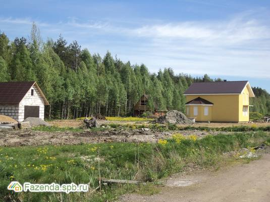 Коттеджный поселок  Новое Кискелово, Всеволожский район. Актуальное фото.