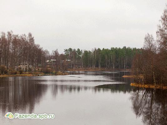 Коттеджный поселок  Vaskela, Всеволожский район. Актуальное фото.