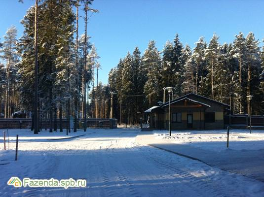 Коттеджный поселок  Еловая Аллея, Выборгский район.