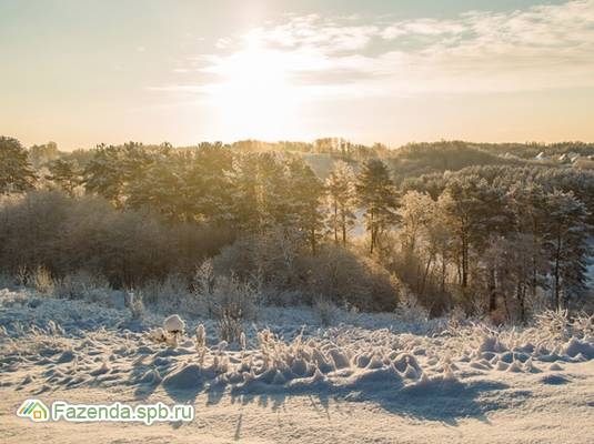 Коттеджный поселок  Озерный Край, Всеволожский район. Актуальное фото.