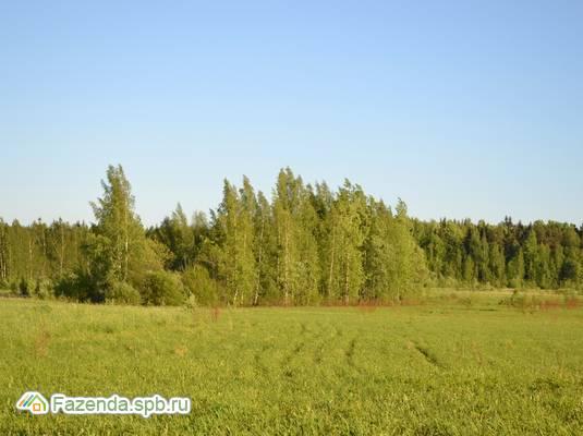 Коттеджный поселок  Услада, Ломоносовский район.