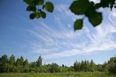 Рядом с Демидовский парк расположен Коттеджный поселок  Демидовская усадьба