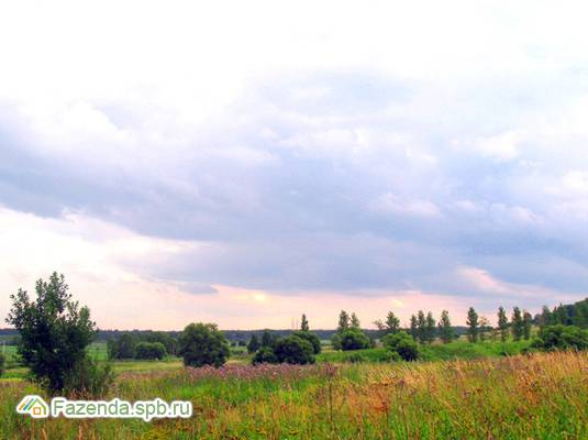 Коттеджный поселок  Малинки, Всеволожский район. Актуальное фото.