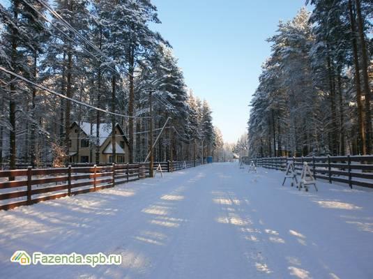 Коттеджный поселок  Оранжерейка, Всеволожский район. Актуальное фото.