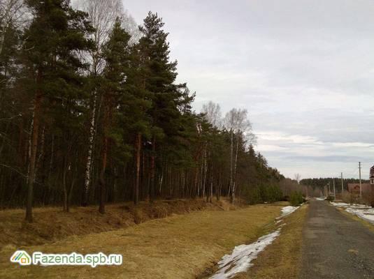 Коттеджный поселок  Новополье, Ломоносовский район.